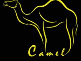 mgg lazada giảm 99k cho thương hiệu thời trang Camel